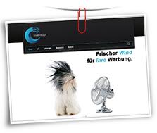 Vorschaubild Website Schädler Design